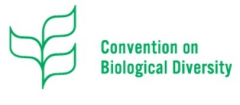 convention-biological-diversity.jpg