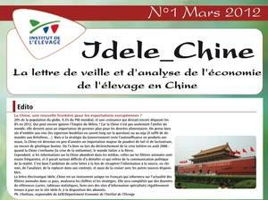 idele_chine__0559b34c5c.jpg