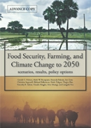 IFPRI-foodsecurity.jpg