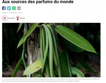 aux sources des parfums du monde.jpg
