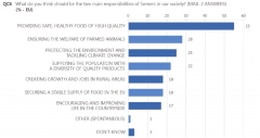Eurobarometre1.jpg