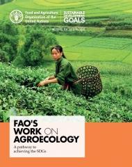 FAO-agroecologie.jpg