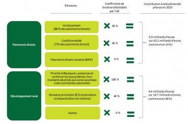 cour des comptes européenne,biodiversité,pac,budget