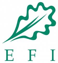 EFI.jpg