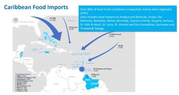 carribean food imports.jpg