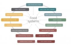 IPES-Food.jpg