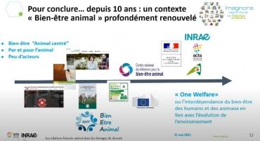 élevage, one welfare,