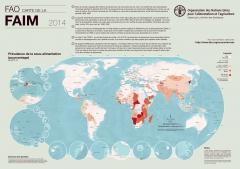 FAO-carte-faim.jpg