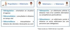 Telemedecine1.jpg